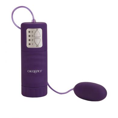 Pocket-Exotics-Waterproof-Bullet-Purple