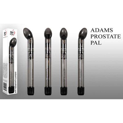 ADAM-S-PROSTATE-PAL